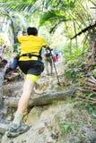 Caminar para arriba una colina tropical del bosque Fotos de archivo