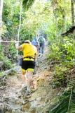 Caminar para arriba una colina tropical del bosque Imagenes de archivo