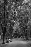 caminata Foto de archivo