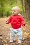 Caminata adorable del bebé por el camino en parque Imagenes de archivo