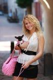 Caminata con los perros Fotos de archivo libres de regalías