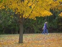 Caminata de la caída Foto de archivo libre de regalías