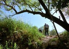 Caminata de la mañana imagenes de archivo