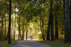 Caminata de la mañana Foto de archivo