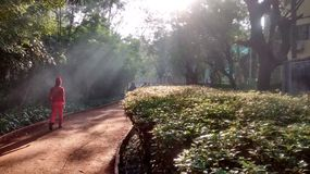 Caminata de la mañana Imágenes de archivo libres de regalías