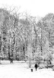 Caminata de la nieve con el perro Fotografía de archivo libre de regalías