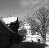 Caminata del invierno Fotografía de archivo libre de regalías