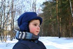 Caminata del invierno. Imagen de archivo