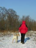 Caminata del invierno con el perro Imágenes de archivo libres de regalías