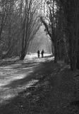 Caminata del invierno en maderas Imagenes de archivo