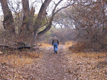 Caminata del otoño Imagenes de archivo