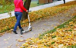 Caminata del otoño en el parque Fotografía de archivo