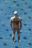 Caminata en el agua Imagenes de archivo