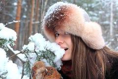 Caminata en el bosque del invierno Foto de archivo