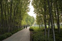 Caminata en el campo Fotografía de archivo libre de regalías