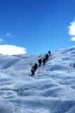 Caminata en el glaciar Fotos de archivo libres de regalías