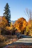 Caminata en el parque Imágenes de archivo libres de regalías