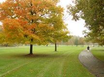 Caminata en el parque fotos de archivo