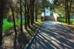 Caminata en el parque Fotografía de archivo libre de regalías