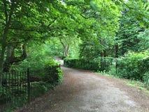 Caminata en el parque Imagen de archivo