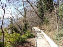 Caminata en el parque Fotos de archivo libres de regalías