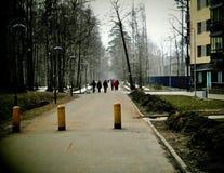 Caminata en el parque del resorte Fotografía de archivo