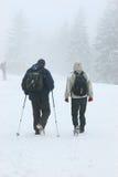 Caminata en invierno Foto de archivo libre de regalías
