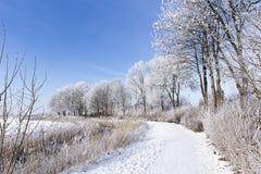Caminata en invierno Fotografía de archivo libre de regalías