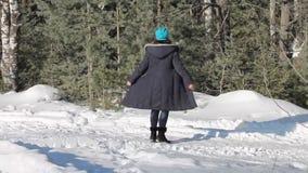 Caminata en la nieve almacen de video