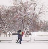 Caminata en parque Fotografía de archivo libre de regalías