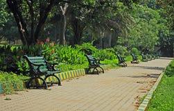 Caminata en parque Imagen de archivo