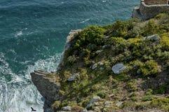 Caminata escénica en Cabo de Buena Esperanza Fotos de archivo