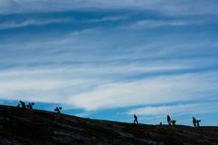 Caminata a la tapa Foto de archivo libre de regalías