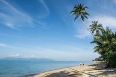Caminata a lo largo de la playa Fotografía de archivo libre de regalías