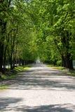 Caminata pacífica Foto de archivo