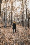Caminata a través de las maderas Imagen de archivo