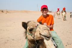 Caminatas en un camello Foto de archivo libre de regalías