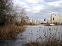Camine en el invierno por el lago en el parque foto de archivo