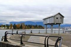 Camine en el puerto del carbón que goza de Autumn Color, fauna, centro de la ciudad, Vancouver, Columbia Británica Imagen de archivo libre de regalías