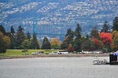 Camine en el puerto del carbón que goza de Autumn Color, fauna, centro de la ciudad, Vancouver, Columbia Británica Imagen de archivo
