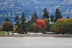 Camine en el puerto del carbón que goza de Autumn Color, fauna, centro de la ciudad, Vancouver, Columbia Británica Imagenes de archivo