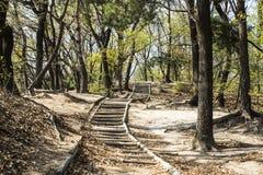 Camine lentamente de una manera tranquila y ordenada Fotos de archivo