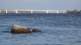 Camine a lo largo del río de Dnepr, cerca del puente metrajes