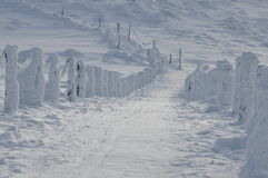 Camine los rastros de montaña cubiertos con nieve Imagen de archivo
