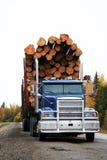 Caminhão de registo Fotos de Stock Royalty Free