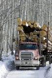 Caminhão de registo carregado que conduz na estrada Imagem de Stock