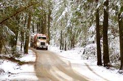 Caminhão do log Foto de Stock