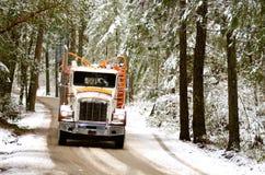 Caminhão do log Foto de Stock Royalty Free