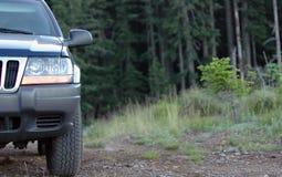 Caminhão nas madeiras Fotos de Stock Royalty Free