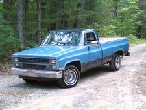 Caminhão nas madeiras Imagem de Stock